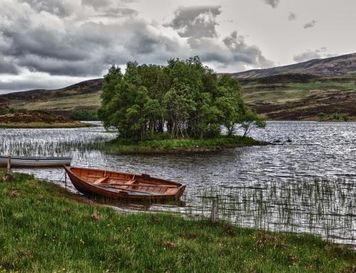L'ambiente e il territorio